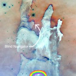Blind Navigator copy